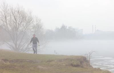 туманные перспективы город туман парк залив апрель