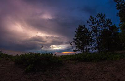 Закат перед штормом шторм Финский залив пляж песок кусты закат облака вода берег дерево свет