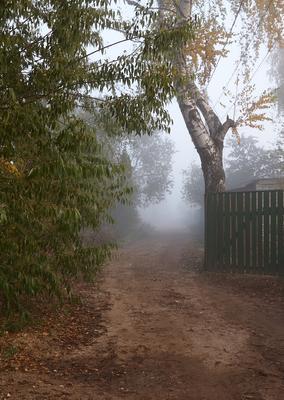 Дорога в неизвестность Белый городок Тверская область осень