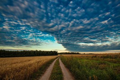 Летний закат в русском поле.