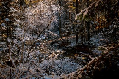 Зима в лесу.... Зима лес снег деревья сугробы река