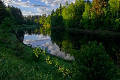 Тихое утро пейзаж река утро