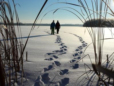 Заповедное озеро тени