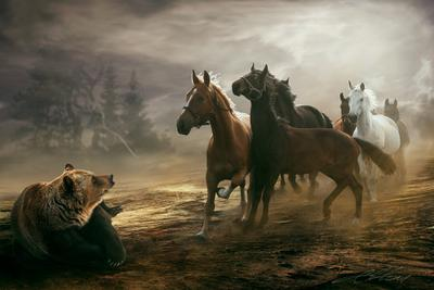 Encounter Digital Photo Art Horses Eltons Fantasies
