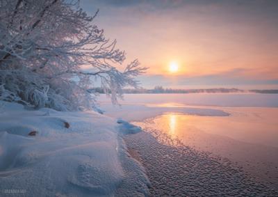 Морозная нега Мороз озеро Шатура иней рассвет зима