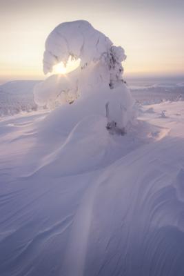 Заигрывая с солнцем урал северныйурал гух рассвет зима снег
