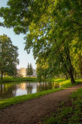 Кингисепп Город парк лето