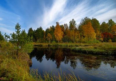 Карелия. Речка. Октябрь. Карелия Онежское озеро