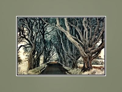 Декорации Властелина колец... Дорога среди теней Ирландский дневник