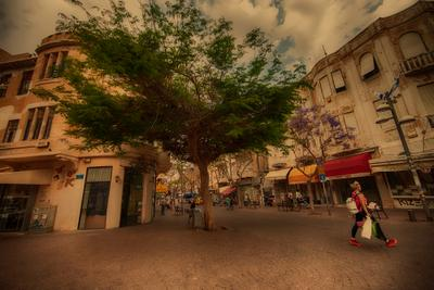 Tel-Aviv 0364 Photographer Alexander Tochinskiy
