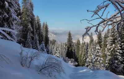 По ущелью, в горы природа горы зима Алматы