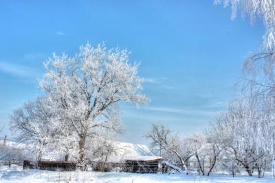 Белым снегом закружила мгла зима снег пейзаж сказка