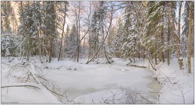 *** лес река зима