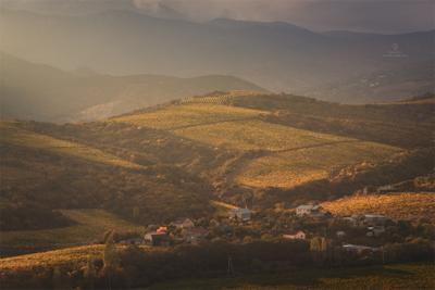 Виноградная долина крым осень пейзаж виноградники
