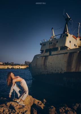 Ship Fox