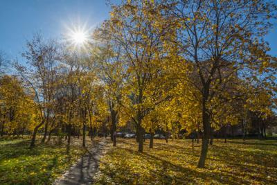 Солнечная осень осень солнце