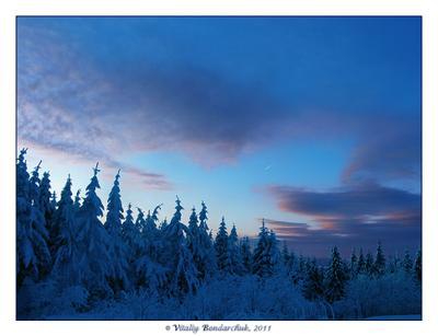 вечерний закат снег, Карпаты, горы, лес