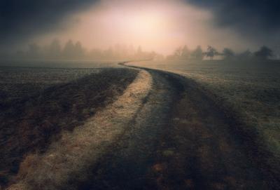 дорогой в утро дорога рассвет тучи
