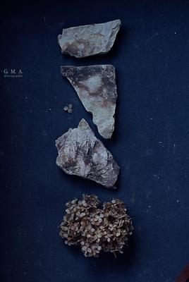 контраст фактур сухие цветы камни фактуры