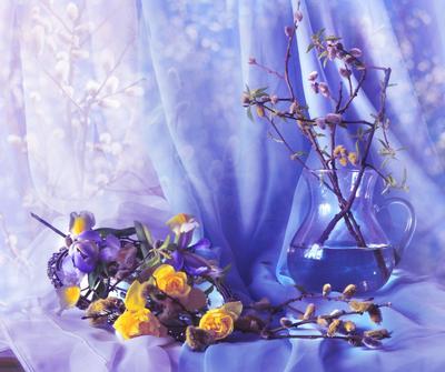 Апрель вступил в свои владения... still lif натюрморт цветы фото праздник настроение весна верба апрель вербное воскресение зеркало отражение