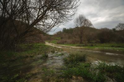 Окрестности Терновки 2 Лес дорога пейзаж