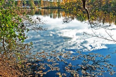 Отражение осени Осень озеро отражение