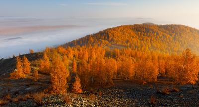 Золотой Карабаш карабаш южный урал осень туман