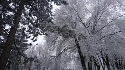 *** зима снег улица вечер