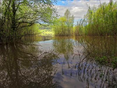 Вешние воды. весна вода берега облака