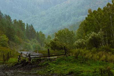 Осенний дождь... (фрагмент) Осень дождь лес горы туман вода