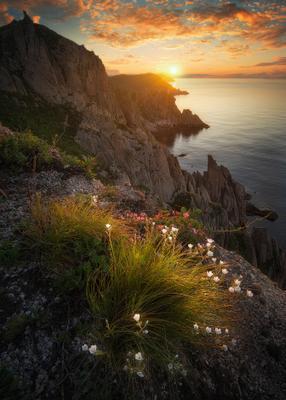 *** Приморские мотивы *** Приморский край заповедник рассвет море солнце