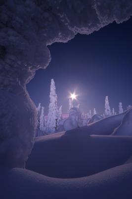Холодная тишина. В окружении безмолвных великанов урал северныйурал гух ночь зима снег луна
