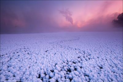 Скоро зима в коралловой долине Москва, Братеево, мороз