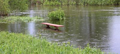 *** половодье ... половодье река нерль скамейка