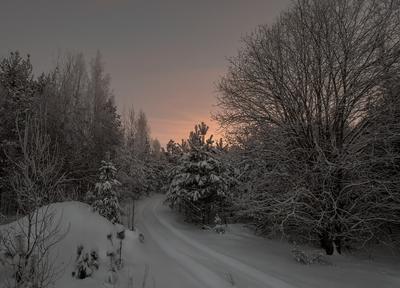 Уходящий день. зима