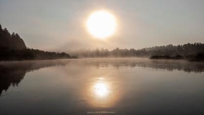 *** рассвет утро туман река молога