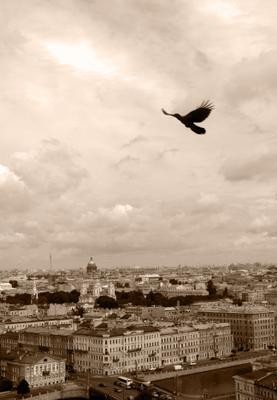 С высоты полёта... Питер Санкт-Петербург высота