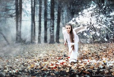 Сомфония №1 музыка девушка ангел крылья осень дым цвты симфония лес холодно