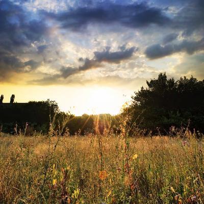 Солнце солнце, закат