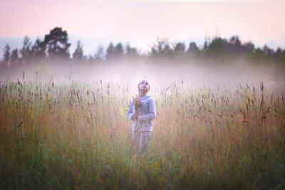 В тумане Туман поле вечер девочка пейзаж цветы в