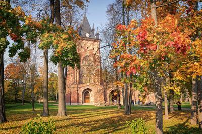 Осень в Царском Селе. Шапель. петербург осень царское село шапель александровский парк