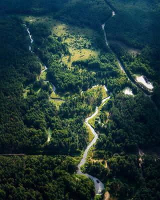 *** лес река дорога россия пейзаж