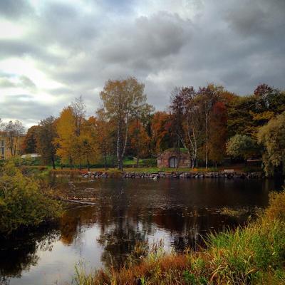 Краски осени Природа осень пейзаж