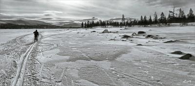 *Мартовская лыжня* путешествие фотография весна лыжня Север Кольский полуостров Светлана Мамакина Lihgra Adventure