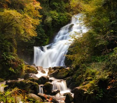 ...Torc waterfall... ireland torc waterfall long exposure ring of kerry killarney national park nature outdoors river stream fall flowing season autumn europe mysterious picturesque