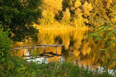 Золотой закат закат старый причал трава озеро