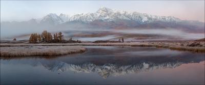 Куркурек в тумане. Предрассветная Алтай Северо-Чуйский хребет Ештыкель