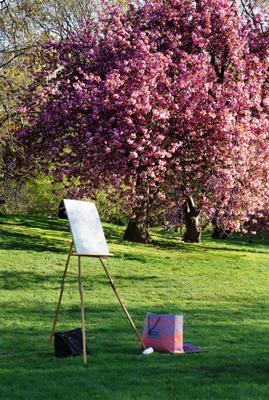 Мир, покинутый людьми Центральный парк, весна, Нью-Йорк, деревья,