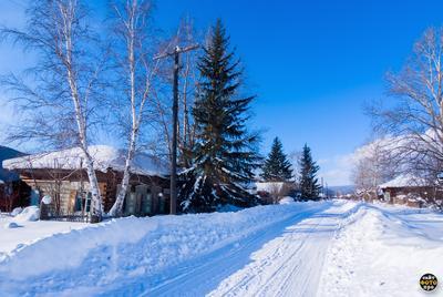 *** природа села Орлинги