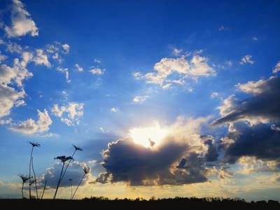 Весеннее небо Тучи, Солнце